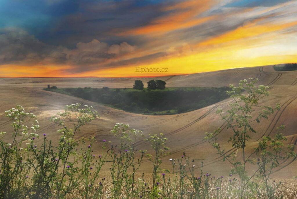 Landscape, okres Hodonín 2020
